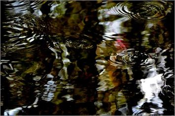 1-pf-des-ronds-dans -l-eau-bayeux-2014_0079.JPG